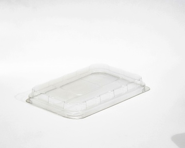 Separate lid for 9 units of dates tray | SN:12881