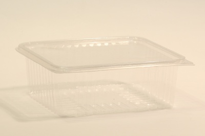 Square tray with connected lid | SN:5560 segal